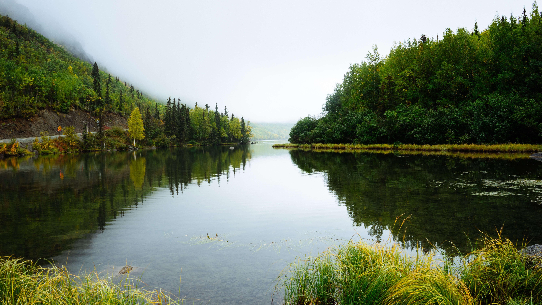auke-bay-lake-trail-nature-hike-juneau
